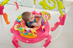 Fisher-Price Jumperoo Pink Petals