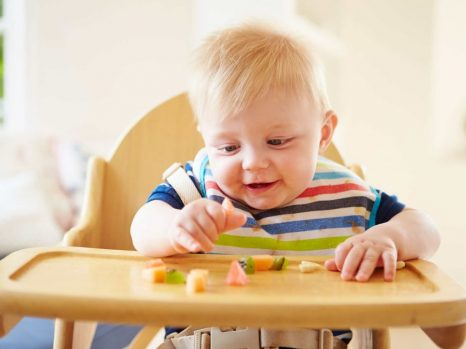 Best Booster Seats for Table & Eating