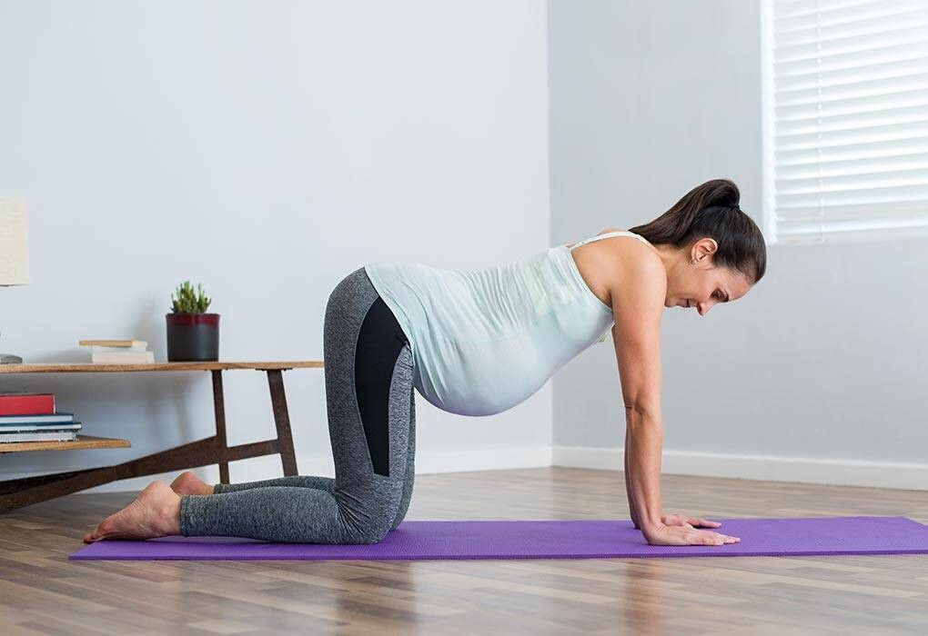 pregnancy pelvic tilts exercise