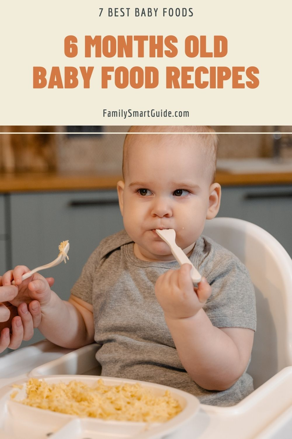 6 Months Old Baby Food Recipes 7 Best Baby Foods
